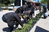 Anneler Gününde çiçekler Büyükşehir'den