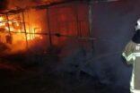 At çiftliğinde yangın: 10 at telef oldu