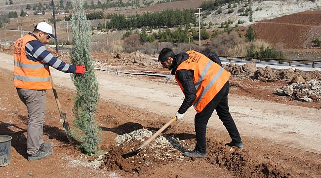 Şanlıurfa Büyükşehir: Şehrimi seviyorum, ağacımı dikiyorum