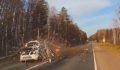 Ağaç otomobili parçaladı