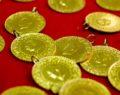 Yeni haftada altın fiyatları
