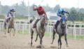Nilüfer Belediye Başkanlığı Koşusu'nu Işkınat kazandı