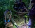 Kapana yakalanan ayı ekipler tarafından kurtarıldı