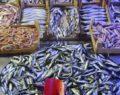 Balık tezgahlarında hareketlilik başladı