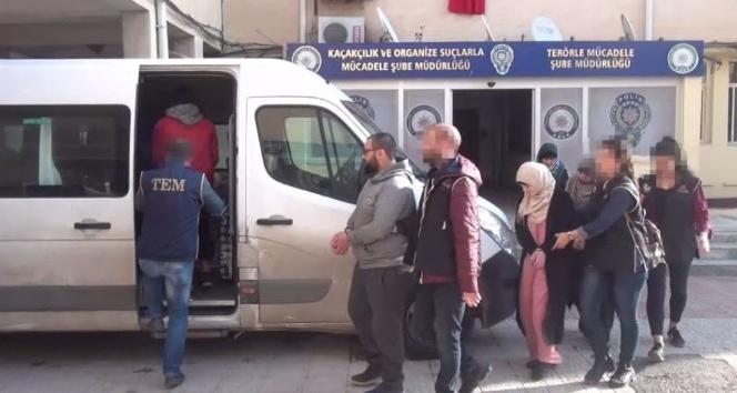 Şanlıurfa'da 5 Deaş'lı tutuklandı