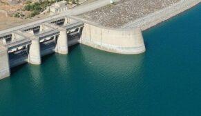 Atatürk Barajı'nda milyonlarca balık üretiliyor