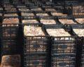 Dağıtacağız diye bayramda 41 ton et toplamışlar