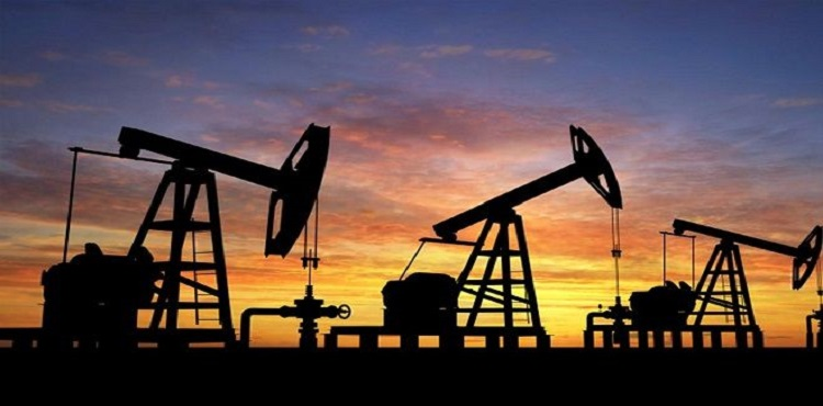 TPAO'ya altı petrol arama ruhsatı verildi
