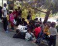 42 sığınmacı yakalandı