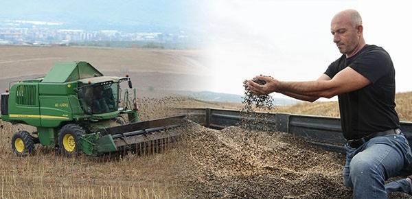 Bu hasadın ürünleri ihtiyaç sahiplerine ulaştırılacak
