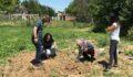 Kadın çiftçiler tarımsal yeniliklerle buluşturuluyor