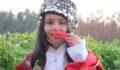 Urfa'da isot hasadı programı düzenlendi