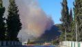 İznik'teki orman yangını kontrol altına alındı