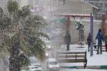 Şanlıurfa'da kar sevinci