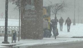 Doğu Anadolu bölgesinde kar esareti zirvede