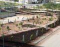 Karaköprü'de park çalışması