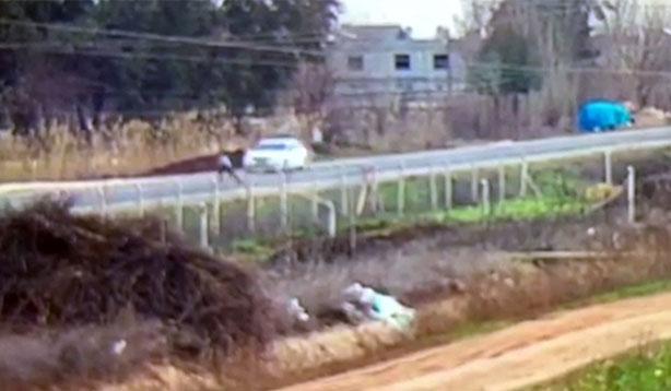 Şanlıurfa'da vicdansız sürücü çarpıp kaçtı,yaya öldü