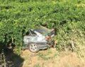 Otomobil üzüm bağına uçtu: 5 yaralı
