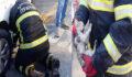 Sıkışan kedi yavrusunu itfaiye ekipleri kurtardı