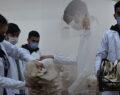 Urfa'da öğrenciler ürettikleri mantarların hasadına başladı