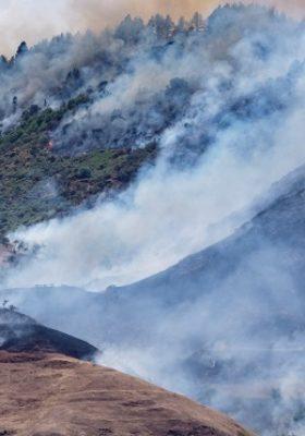 Kanarya Adaları yangınında 9 bin kişi tahliye edildi