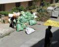 Bir evden üç ton çöp çıktı