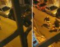 Sahur vakti davulculara bıçaklı saldırı