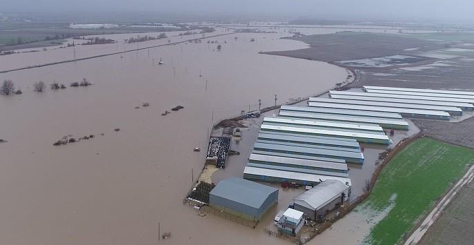 Hırsızlar yüzünden çiftlikleri  sel bastı