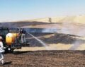 Buğday tarlası kül oldu