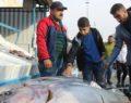 Ton balıkları vatandaşların ilgi odağı oldu