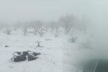 Şanlıurfa'nın ilçesine yağan kar hayatı olumsuz etkiledi