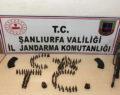 Şanlıurfa'da operasyon: 24 gözaltı