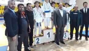 Büyükşehir Belediyesi Judo Takımı  grup şampiyonu