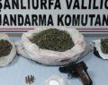 Şanlıurfa'da cezaevi firarisi uyuşturucu ve silahla yakalandı
