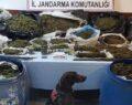 61 kilo uyuşturucu ile yakalandılar