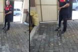 Şanlıurfa'da evde yakalanan yılan doğaya bırakıldı