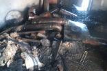 Suruç'ta odunluk yangını korkuttu