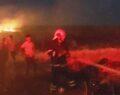 Şanlıurfa'da mısır tarlasında yangın