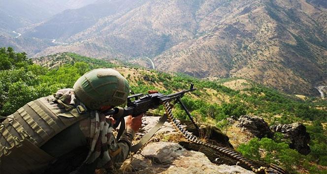 Mardin, Batman ve Şırnak kırsalında 'Kıran 2 müşterek operasyonu' başladı