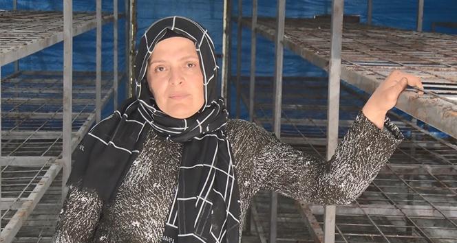 Dolandırıldığını iddia eden kadın girişimci yardım bekliyor