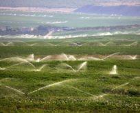 Toprak verimli kullanılacak ekonomiye katkı sunulacak