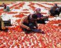 'Akça kadınlar' hem üretiyor hem ihraç ediyor