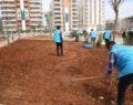 Haliliye belediyesinden parklarda bakım ve yeşillendirme çalışması