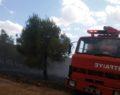 Atatürk Barajı ormanında yangın