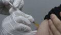 Yerli aşı için gönüllü aranıyor