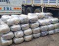 Narkotik köpeği 721 kg esrar yakaladı