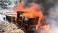 Çıkan yangında arı kovanları küle döndü