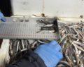 Balıkçılara şok denetim : Binlerce kilogram balığa el konuldu
