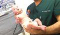 Şanlıurfa'lı  ''parmak bebek'' hayata tutundu
