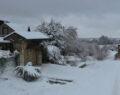 Büyükşehir Belediyesi'nin karla kesintisiz mücadelesi
